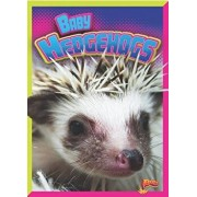 Baby Hedgehogs, Paperback/Deanna Caswell