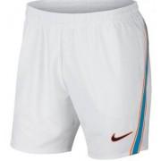 NIKE Rafa Flex Ace Shorts 7 tum (L)