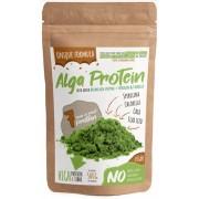 Alga protein (500 g) - vegán fehérje