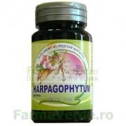 ARTRED Harpagophytum 30 tablete Herbavit