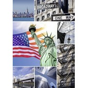 Puzzle Nathan - New York, 1.500 piese (47908)