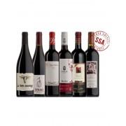 Probierkisten Rotwein ungeschwefelt zum Probieren / 6 Flaschen Bio
