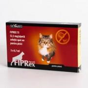 Fiprex Spot On pisici - 3 pipete antiparazitare