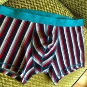 Frederiqua de Silk QuatriColori Boxer Brief Underwear 2839