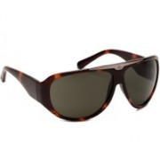 Calvin Klein Over-sized Sunglasses(Black)