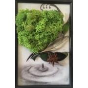 Aranjament tablou cu licheni stabilizati