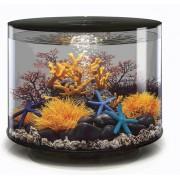biOrb akvárium TUBE MCR 35 černá