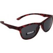 Iryz Oval Sunglasses(Grey)