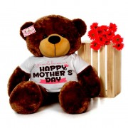 4 feet big brown teddy bear wearing You are the best mom ever Happy Mothers Day T-shirt