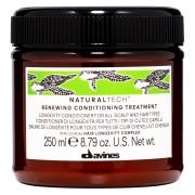 Davines Renewing Conditioning Treatment (250 ml)