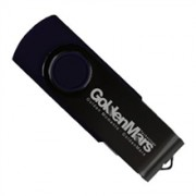 Golden Mars USB 2.0 Flash Disk - 256GB