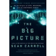 The Big Picture: On the Origins of Life, Meaning, and the Universe Itself, Hardcover