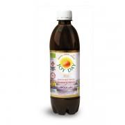 Joy Day Napój probiotyczny Owoce Lasu BIO 500ml - Joy Day