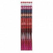 Set 6 creioane cu guma sters Ladybug