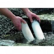 Dispozitiv pentru prevenirea algelor Oase PhosLess