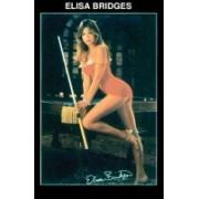 Poster Elisa Bridges
