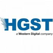 Western Digital Ultrastar DC HDD Server HE14 3.5-, 14TB, 512MB, 7200 RPM, SAS 12Gb/s, 512E SE P3, SKU 0F31052