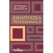 Identitatea profesională. Strategii necovenţionale pentru redefinirea carierei .