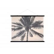 Canvas schoolplaat Palm XL Naturel