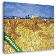 Vincent Van Gogh: Aratás Provence-ban (30x25 cm, Vászonkép )