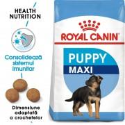 PROMO Royal Canin Maxi Puppy 4 Kg + 5 plicuri SHN Wet Maxi Puppy 140g