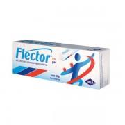 Ibsa farmaceutici italia srl Flector Gel 50 G 1%