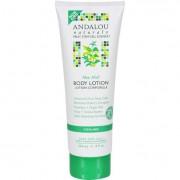 Andalou Naturals Body Lotion - Aloe Mint Cooling - 8 fl oz