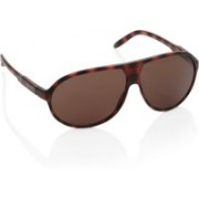 Timberland Aviator Sunglasses(Brown)