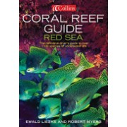 Coral Reef Guide Red Sea - Red Sea to Gulf of Aden, South Oman (Lieske Ewald)(Paperback) (9780007159864)
