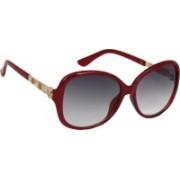 Eyeland Over-sized Sunglasses(Black, Violet)