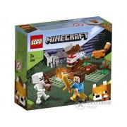 LEGO® Minecraft 21162