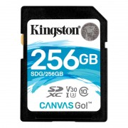 Kingston SDXC Canvas Go 90R/45W, 256GB