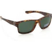 Invu Wayfarer Sunglasses(Green)