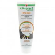 Vetoquinol Care Energie Veterinaire