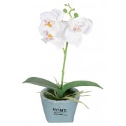 Jysk Partivarer Vit Lavendel blomma - I snygg kruka - Höjd 15 cm - Snygg konstgjord lavendel