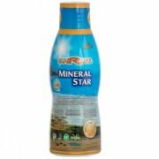 Mineral Star 500 ml