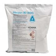 Fungicid Merpan 80 wdg 150 gr
