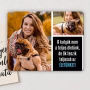 Fényképes hűtőmágnes kutyabarátoknak