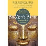 Buddha's Brain: The Practical Neuroscience of Happiness, Love & Wisdom, Paperback/Rick Hanson