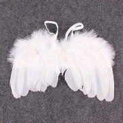 AST Works Baby Girls Angel Wings Wing Set Feather Newborn Photography Pro Decoration Cloth