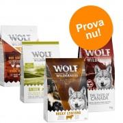 "Wolf of Wilderness PROVA TILL KANONPRIS: Wolf of Wilderness Adult i blandpack - ""Soft & Strong"" mix (3 x 1 kg)"