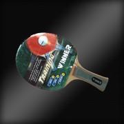 Paleta ping-pong Winner Training