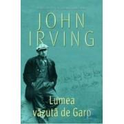 Lumea vazuta de Garp - Cl - John Irving