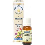 Marjolaine - Huile essentielle Bio - 10ml