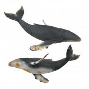 Figurina Balena cu cocoasa Collecta, 22 cm, 3 ani+