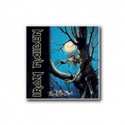 Warner Music Iron Maiden - Fear Of The Dark (Remastered)