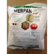 Fungicid Merpan 80 wdg