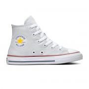 Converse All Stars Chuck Taylor 666817C Grijs / Wit-27