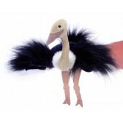 Hape - - Beleduc Ostrich Glove Puppet