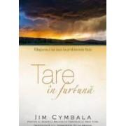 Tare in furtuna - Jim Cymbala